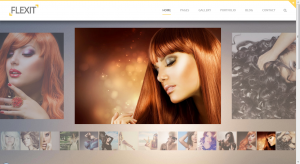 Flexit WordPress Theme